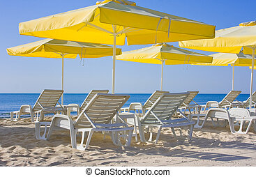 view of chairs and umbrellas on the beach