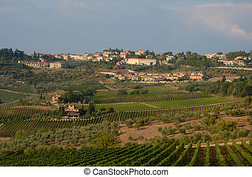 View of city in Tuscany, Italy.