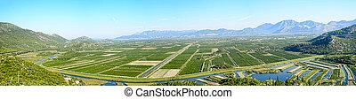 view of crop fields