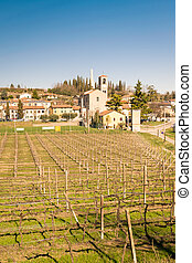 View of Custoza surrounded by the vineyards.