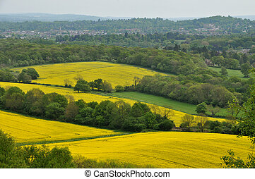 View of Dorking, Surrey and yellow rapeseed fields