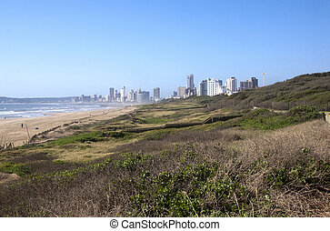View of Durban's Beach with Hotels in Background