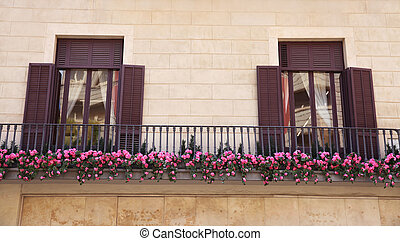 view of european balcony with windows and flowers