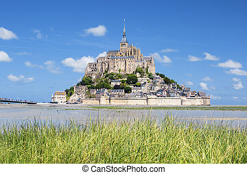 Mont-Saint-Michel and green grass - View of famous...