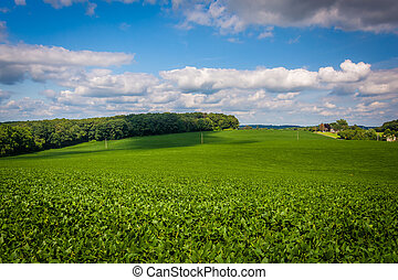 View of farm fields in rural Baltimore County, Maryland.