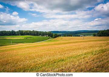 View of fields in rural Baltimore County, Maryland.