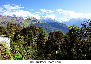 "View of ""Fish Tail"" mountain, trek to base camp Annapurna..."
