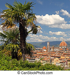 view of Florence with palm trees