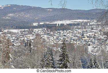 View of Frauenau in winter
