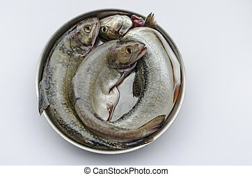 View of fresh raw small fish in the baking dish after cleaning
