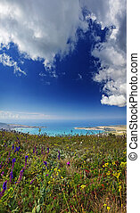 View of Gelendzhik from the height of the Markoth ridge. In the foreground spring grass and flowers.