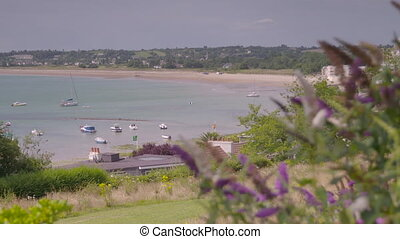 View of Gorey Harbour with wildflowers in front