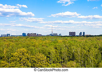 view of green woods near city in summer