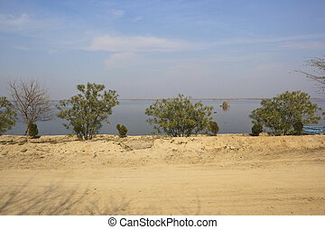 view of Harike Wetlands
