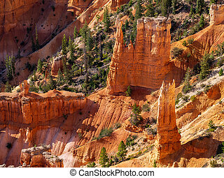 View of Hoodoos in Bryce Canyon National Park, Utah, USA