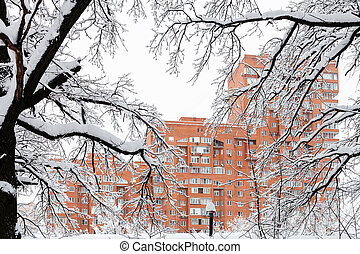 view of house through snow-covered branches