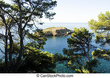 View of Ile rousse island and mediterraneen pines, at Bandol on the French riviera