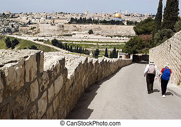View of Jerusalem from Mount of Olives - Two visitors...