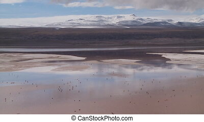 View Of Laguna Colorada Landscape, Bolivia - Wide high-angle...