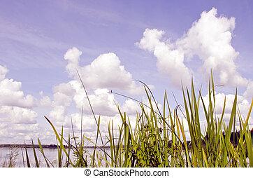 View of lake and sky.