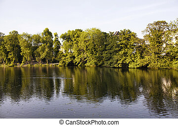 View of lake and trees at Spee'scher Graben (a park) in Dusseldorf.