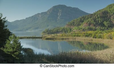 View of lake, bay with dried sedge grass, green mountain ridges with pine trees and flying birds, Dalyan valley, Turkey. 4k