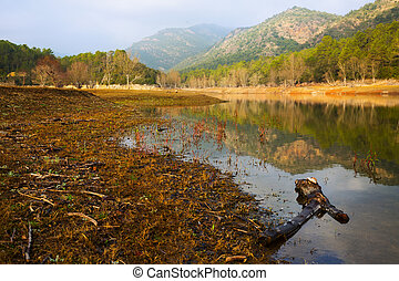View of lake in autumn day. Muga, Catalonia
