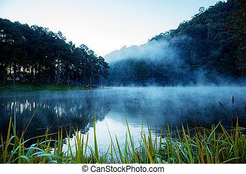 View of lake in morning.