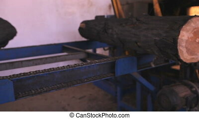View of log moving along conveyor belt at the furniture factory