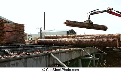 View of logger unloads lumber on base - Woodworking. View of...