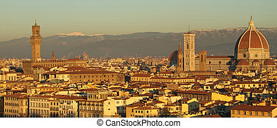 view of monumental city of  Florence