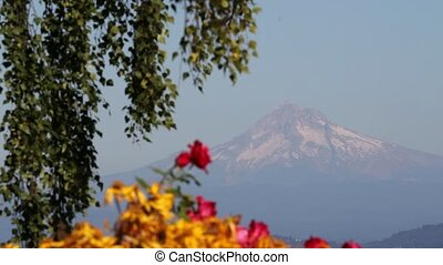 View of Mount Hood in Portland OR