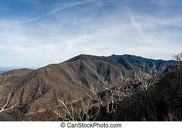 View Of Mount LeConte In Late Fall