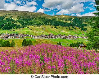 View of mountain alpine village in summer