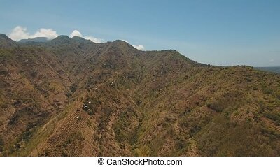 View of mountain forest landscape. Bali - Aerial view of...