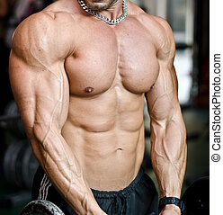 View of muscular torso of male bodybuilder in gym - Muscular...