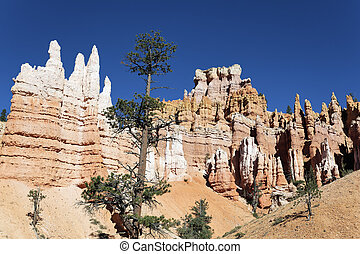 view of Navajo Trail in Bryce Canyon