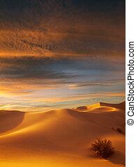 dunes - view of nice sands dunes at Sands Dunes National ...