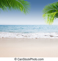 View of nice tropical beach with so