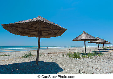 View of nice tropical empty sandy beach with umbrella
