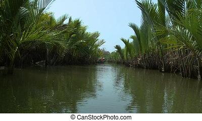 View of Nipa Palms along Kangy River, Myanmar - Wide...