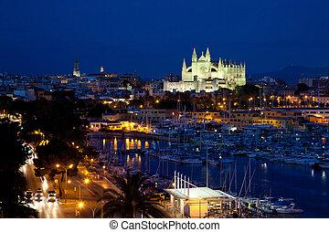 View of Palma de Mallorca with Cathedral Santa Maria