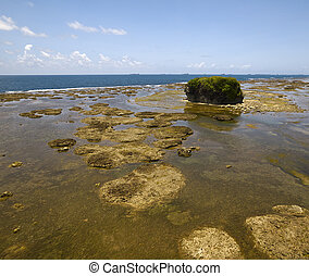 View of Panama coastline