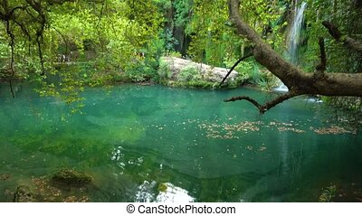 View of pond and waterfall - Green colorful pond and...