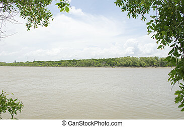 View of river and forest in Thailand.