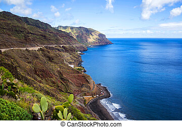 View of rocky coast, Tenerife island, Spain