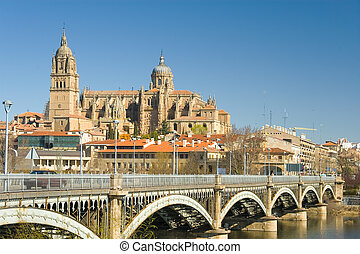 View of Salamanca, Castilla y Leon (Spain)