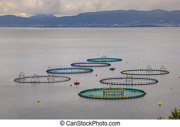 View of salmon farm in Norway