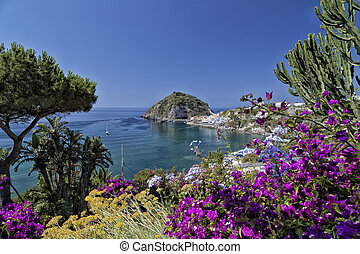 A view of Sant Angelo in Ischia island in Italy through bougainvillea glabra