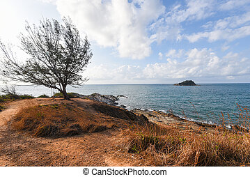 View of sea waves with tree and fantastic rocky coast landscape - Seascape rock tropical island with ocean and blue sky background in Thailand